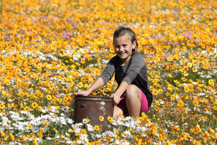 Flowers,-Cederberg,-Jacques-Greyling3